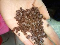 安徽出售咖啡色PVC颗粒