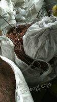 全国高价回收废铜及电线电缆等物资