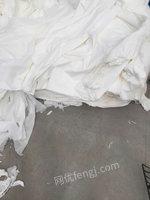 长期大量收购卫生纸厂的纸头