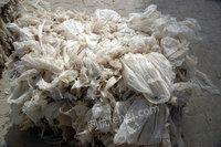 潍坊PP废塑料供应