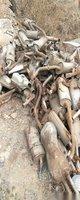 长治回收电缆,废铜,铝,废旧设备,各种家用电器报废