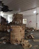 长期回收大量废纸皮废报纸