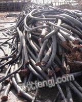 求购废铜废铝电线电缆