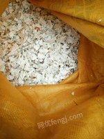 出售破碎料PET.PP.HDPE各种破碎料
