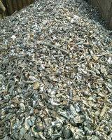 回收废钢破碎料