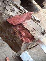 出售血檀木,十八九吨货