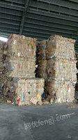 广州番禺高价上门回收废纸皮印刷纸书纸报纸纸箱