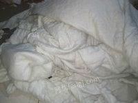 湖北武汉求购大量旧棉被,旧丝绵,棉花