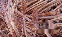 急需北京稀有金属公司北京大量锡板钨板镍板