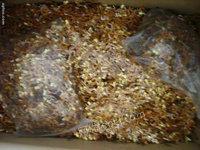 长期回收各种金银废料所有贵金属