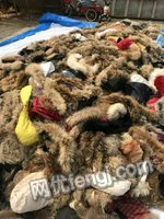 回收各种库存 毛领 毛条,尾货清仓