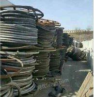 回收废铜 废铝 废铁 废纸 胶瓶 工厂旧设备 等