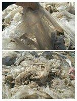 供应地膜、菌袋毛料