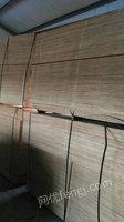 专业回收工地木方模板