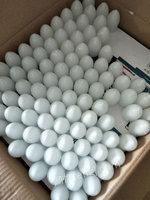 浙江绍兴出售15000箱LED灯具5元一箱