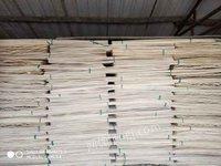 处理杨木板皮1米3#1米各种尺寸
