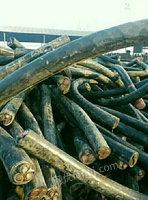 北京朝阳区求购50000吨废铜电议或面议