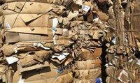求购 废旧黄板纸、废旧进口牛皮纸