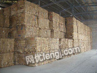 锦州市长期大量收购废旧瓦楞纸,黄板纸