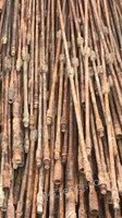 陕西榆林走量处理1000吨提油杆,在定边,暂时就这一批,