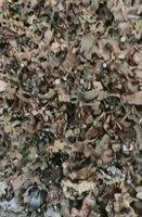 香港天下免费资料大全十字扣件3万配6米,菏泽提货
