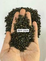 广东河源出售50吨纯pp颗粒--250a