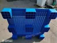 北京大兴区低价出售塑料托盘