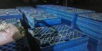 北京通州区各种塑料托盘回收