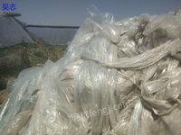 陕西渭南颗粒厂每月采购PP、PE料、编织袋、吨包、塑料膜毛料