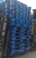 天津津南托盤出售塑料托盤出售
