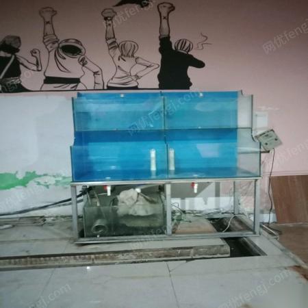 辽宁鞍山海鲜缸便宜带制冷机全套设备出售