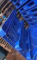 山东济南低价处理一批闲置托盘1200*1000塑料托盘1100*1100
