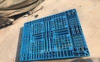 山东济南低价处理闲置塑料托盘1200*1000可垫货一次性发货