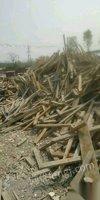 回收四川达州废柴,工地上的废旧木材 木方模板