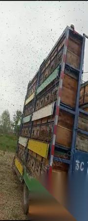 江苏徐州养蜂车转让 6.8万元