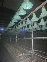 河南出售多台纺纱设备