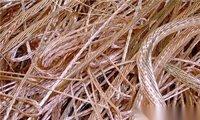 平顶山废电缆回收 废铜 废铝 废电线电缆