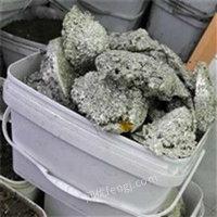 上海松江区出售1吨废锡电议或面议