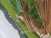 湖北咸宁二手钢管扣件香港天下免费资料大全