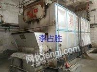 出售6噸二手鏈條鍋爐