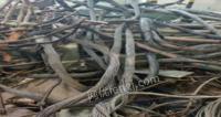 山东淄博收售电线电缆