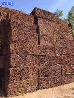 广西桂林求购100吨重废电议或面议