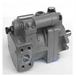 P46-D2-F-R-01柱塞泵