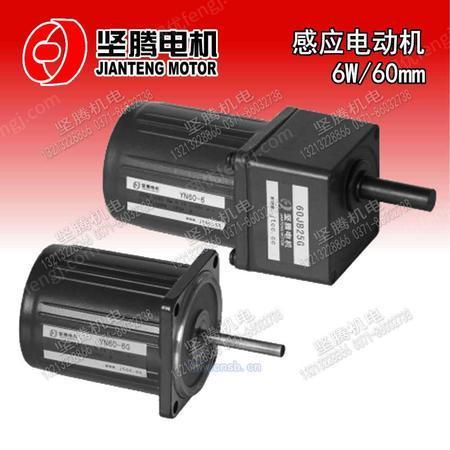 感应电动机6W/60mm