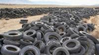 大量回收废轮胎