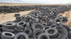 废轮胎出售