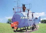 出售燃油氣熱水鍋爐