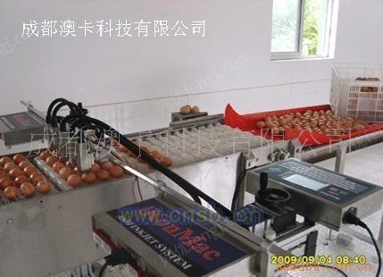 AK-200四川鸡蛋喷码机