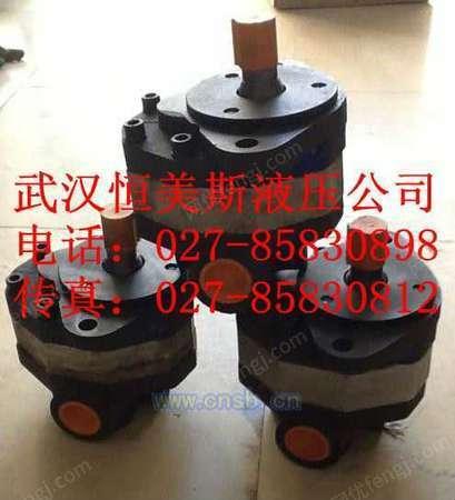 齿轮式油泵CB-HB100-FL