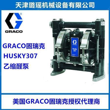 供应固瑞克HUSKY307乙缩醛聚丙烯材质化工泵打胶泵加药泵